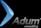 ADUM Consulting